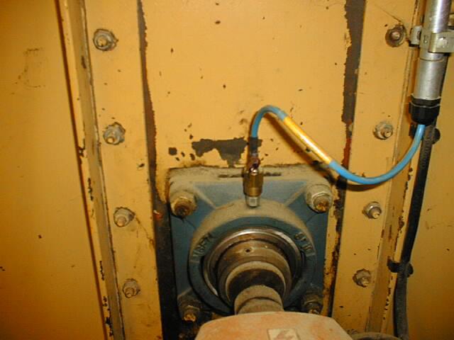 WDB sensor on bucket elevator bearing